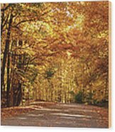 Colorful Canopy Wood Print