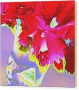 Colorful Carnation Wood Print