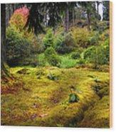 Colorful Carpet Of Moss In Benmore Botanical Garden Wood Print