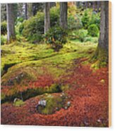 Colorful Carpet Of Moss In Benmore Botanical Garden. Scotland Wood Print