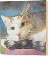 Colorful Cat Watercolor Portrait Wood Print