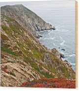 Colorful Cliffs At Point Reyes Wood Print