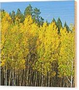 Colorful Colorado 2 Wood Print