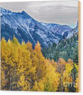 Colorful Crested Butte Colorado Wood Print