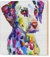 Colorful Dalmatian Puppy Dog Portrait Art Wood Print