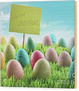 Colorful Easter Eggs With Sign In A Field Wood Print