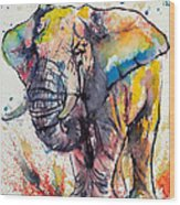 Colorful Elephant Wood Print