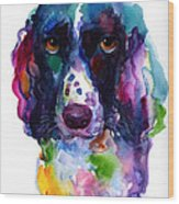 Colorful English Springer Setter Spaniel Dog Portrait Art Wood Print