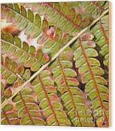 Colorful Fern Square Wood Print