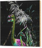Colorful Flamingos Wood Print