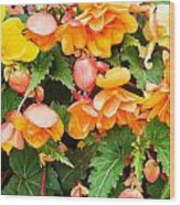 Colorful Flowers Wood Print by Tom Gowanlock