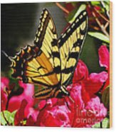 Colorful Flying Garden Wood Print