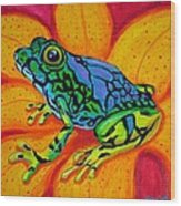Colorful Frog Wood Print