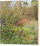 Colorful Garden In Spring Wood Print