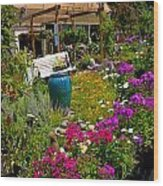 Colorful Greenhouse Wood Print by Amy Cicconi