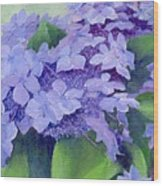 Colorful Hydrangeas Original Purple Floral Art Painting Garden Flower Floral Artist K. Joann Russell Wood Print