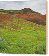 Colorful Iceland Landscape With Green Orange Brown Tones Wood Print
