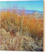 Colorful In The Desert Wood Print