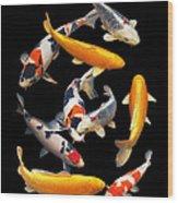Colorful Japanese Koi Vertical Wood Print