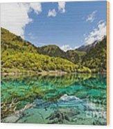Colorful Lake At Jiuzhaigou China Wood Print