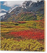 Colorful Land - Alaska Wood Print