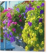 Colorful Large Hanging Flower Plants 1 Wood Print