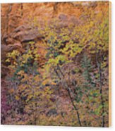 Colorful Leaves On A Tree Wood Print