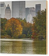 Colorful Magic In Central Park New York City Skyline Wood Print by Silvio Ligutti