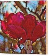 Colorful Magnolia Blossom Wood Print