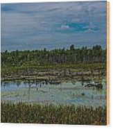 Colorful Marsh Wood Print by Jason Brow