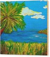 Colorful Marsh Wood Print