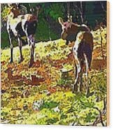 Colorful Moose Wood Print