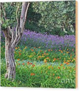 Colorful Park With Flowers Wood Print