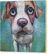 Colorful Pit Bull Puppy With Blue Eyes Painting  Wood Print by Svetlana Novikova