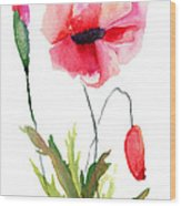 Colorful Poppy Flowers Wood Print