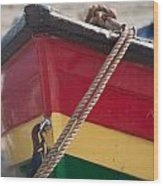 Colorful Rowing Boat Bow Close Up Wood Print