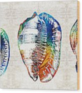 Colorful Seashell Art - Beach Trio - By Sharon Cummings Wood Print