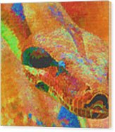 Colorful Snake Wood Print
