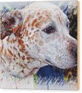 Colorful Spots Wood Print