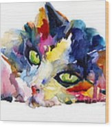 Colorful Tubby Cat Painting Wood Print