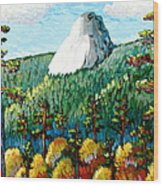 Colorful View Of Idyllwild California Wood Print