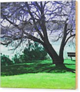 Colorful View Wood Print
