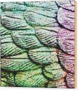 Colorful Wings Wood Print