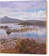 Colorful World Of Rannoch Moor. Scotland Wood Print