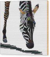 Colorful Zebra 2 Wood Print