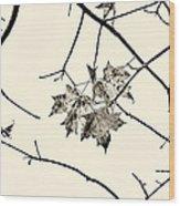 Colorless Autumn Wood Print