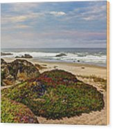 Colors And Texures Of The California Coast Wood Print