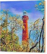 Colors At Barnegat Light Wood Print