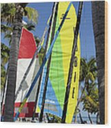 Key West Sail Colors Wood Print