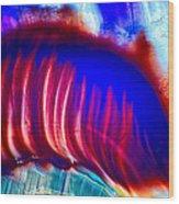 Colors Diving Wood Print